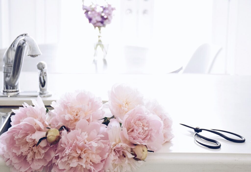 a-bouquet-of-pink-peonies-in-a-kitchen-sink-of-a-b-UTME3B8